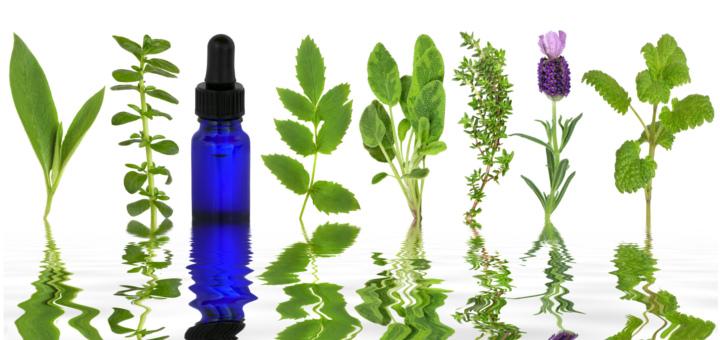 Aceites esenciales en la cocina sano y ecol gico for Aceites esenciales usos